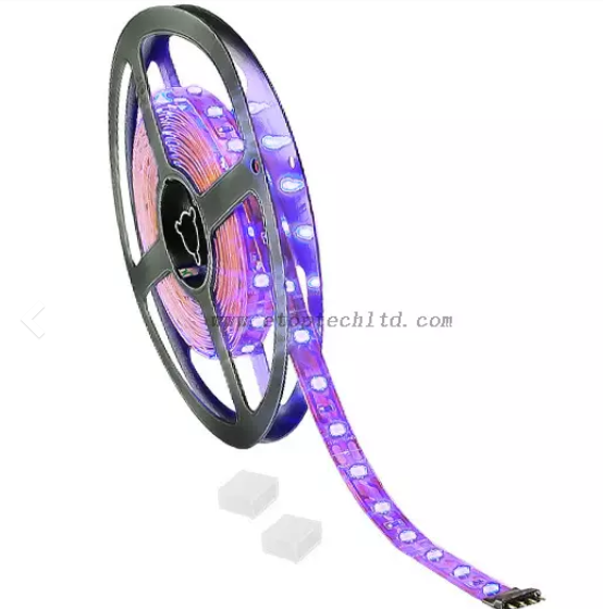 China LED STRIP